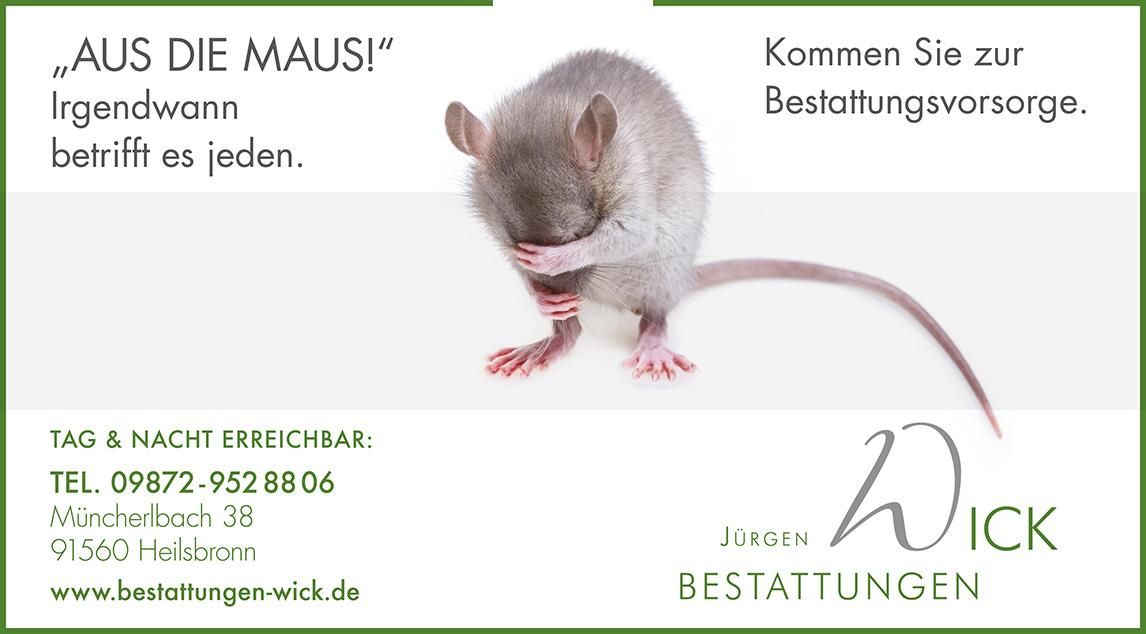 baumeister_erasmus_3_baumeister